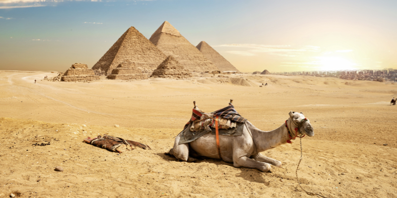 Experience the Highlights of Ancient Egypt